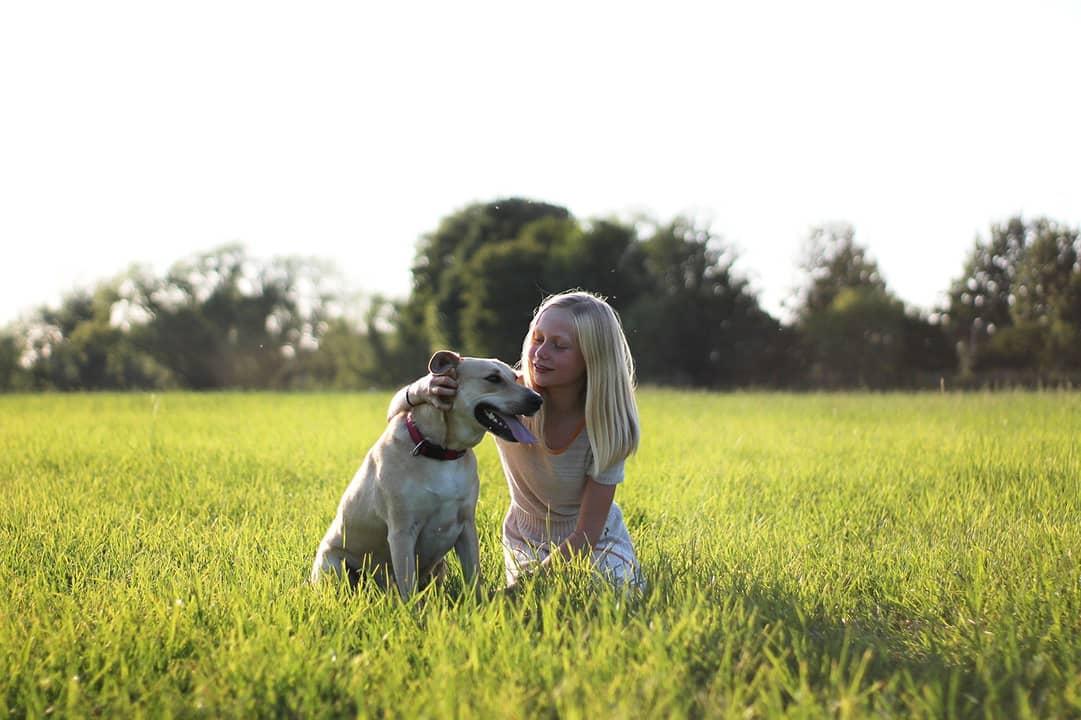 Activite canine - Amaia